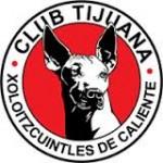 Xolos se arma para Liga Campeones Concacaf
