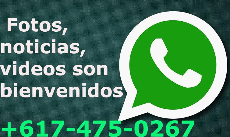 whatsapphondufut